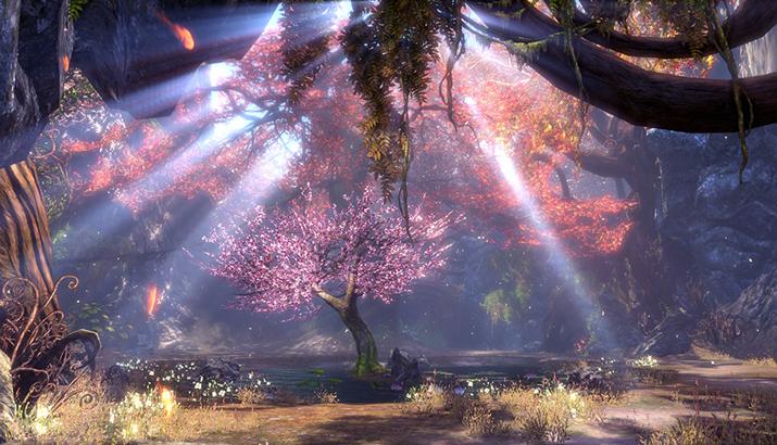환야의 숲