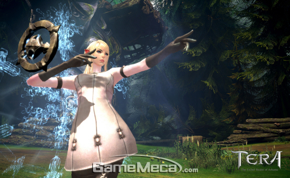 gamemeca_tera_wizard.jpg