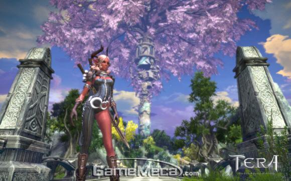 gamemeca_tera_worrior.jpg