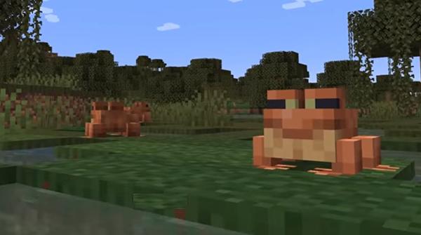 마인크래프트에 진흙과 개구리가 있는 '야생' 업...